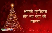 आपको क्रिसमस और नव वर्ष की कामना