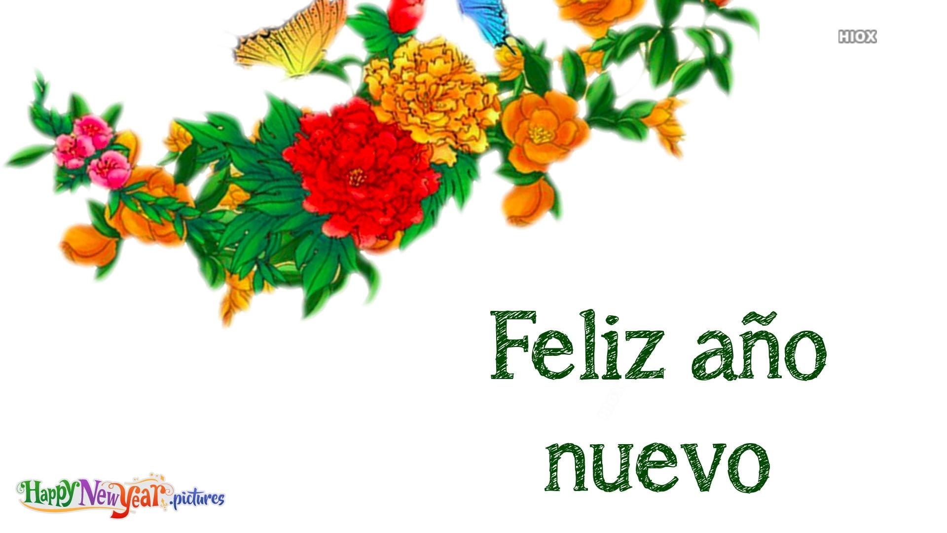 Happy New Year Whatsapp DP In Spanish