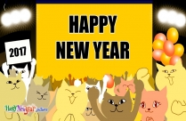 Happy New Year Cat