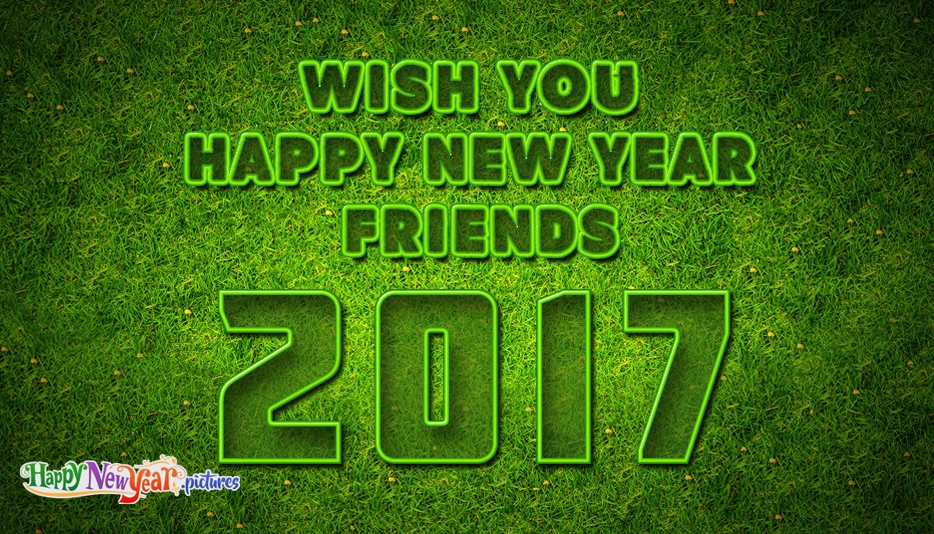 Wish You Happy New Year Friends