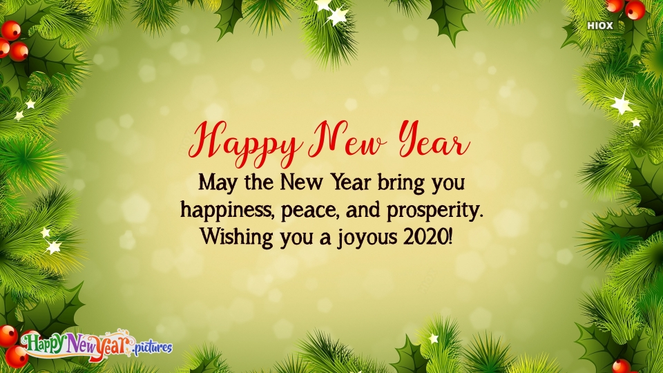 Happy New  Year Joy