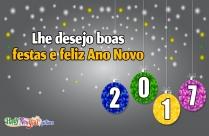 Lhe Desejo Boas Festas E Feliz Ano Novo