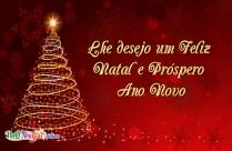 Lhe Desejo Um Feliz Natal E Próspero Ano Novo