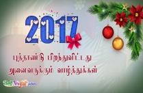 2017 புத்தாண்டு பிறந்துவிட்டது. அனைவருக்கும் வாழ்த்துக்கள்.